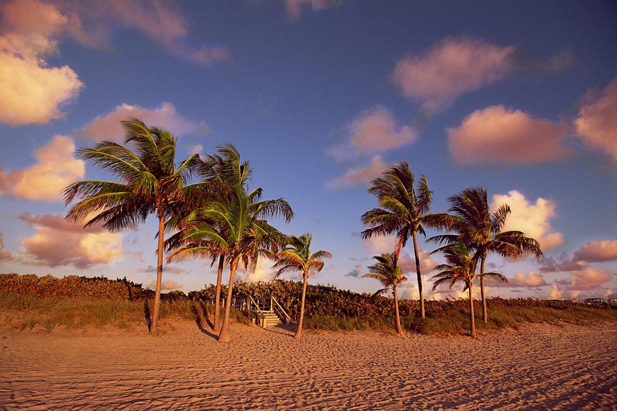 city_beach_hollywood_north_beach_park1-courtesy_of_hollywood_cra.jpg